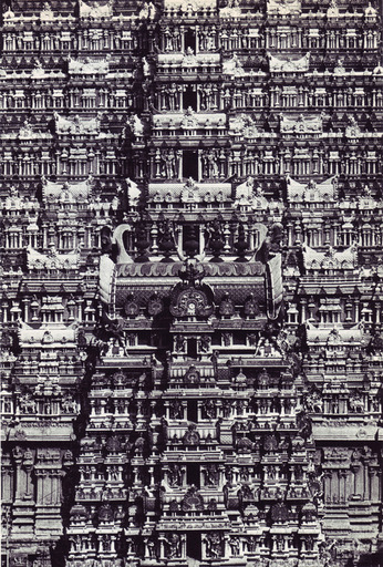 01-living-architecture-india.jpg